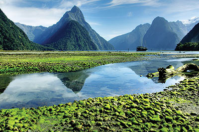 Discovery Wonders of New Zealand